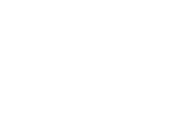 commercial and domestic renovation